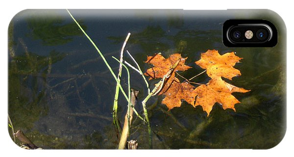 It's Over - Leafs On Pond IPhone Case