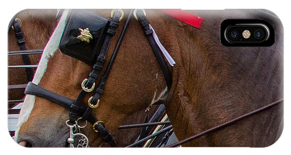 IPhone Case featuring the photograph It's Pretty Horse Day by Robert L Jackson