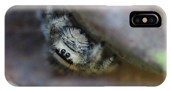 Itsy Bitsy Spider IPhone Case