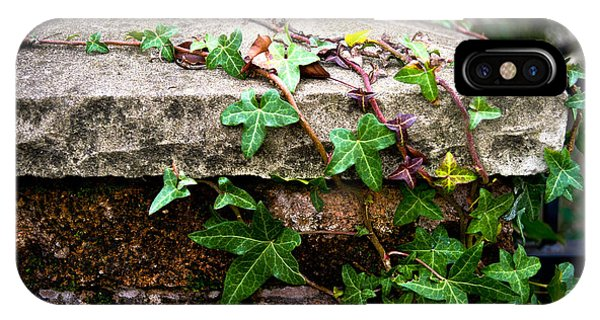 Ivy On Stone IPhone Case