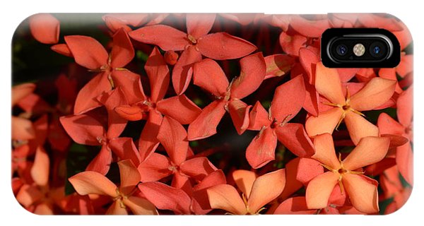 Decorative iPhone Case - Ixora Red by Sanjay Ghorpade