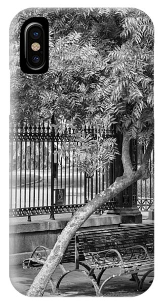 Jackson Square Bench And Tree IPhone Case