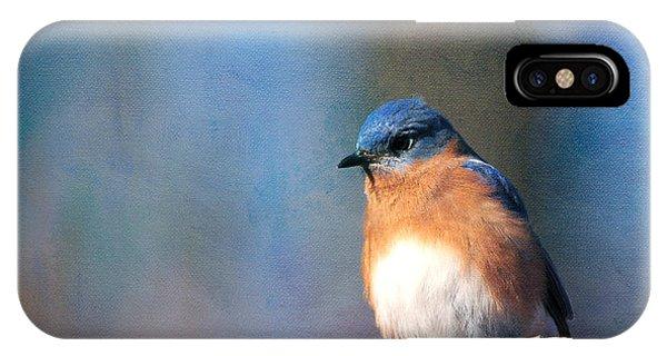 January Bluebird IPhone Case