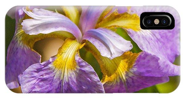 Japanese Iris In Dry Brush IPhone Case