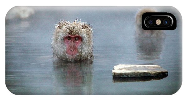 Adapted iPhone Case - Japanese Macaques In A Hot Spring by Andy Crump