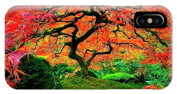 Japanese Red Maple IPhone Case