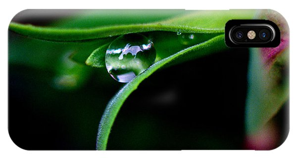 Jasper - Rain Drop Plant IPhone Case