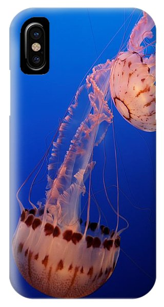 Jelly And Fishy IPhone Case