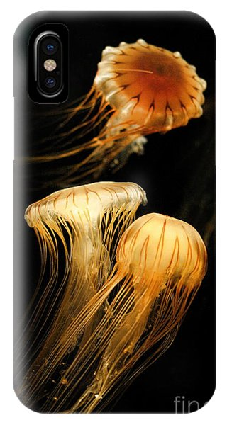 Jellyfish Trio Floating Against A Black IPhone Case