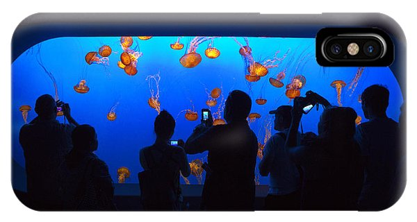 Monterey Bay Aquarium iPhone Case - Jellyfish Viewing by Brian Knott Photography