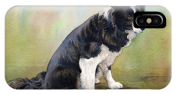 iPhone Case - Jesse The Border Collie by Anthony Forster