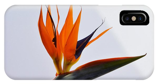 Jewel Of The Tropics. IPhone Case