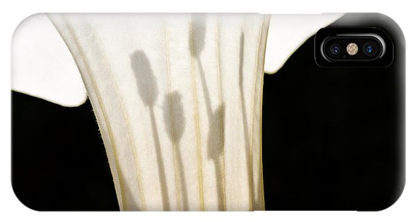 Jimsonweed Chiaroscuro IPhone Case