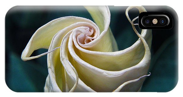 Jimsonweed Flower Spiral IPhone Case