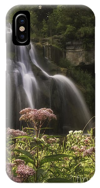 Joe Pye Weed For Pat IPhone Case