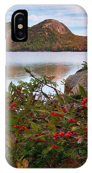 Jordan Pond With Berries IPhone Case