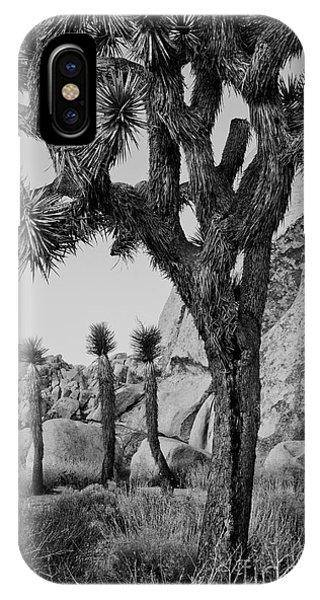 Joshua-tree Babies Phone Case by Mae Wertz