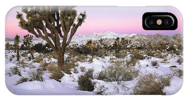Joshua Tree In Snow IPhone Case