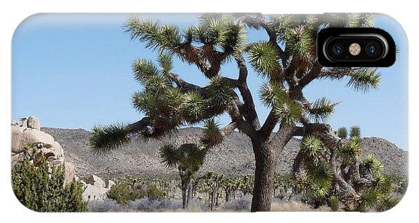Joshua Tree National Park 6 Phone Case by Deborah Smolinske
