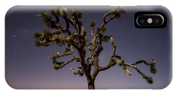 Joshua Tree Night IPhone Case