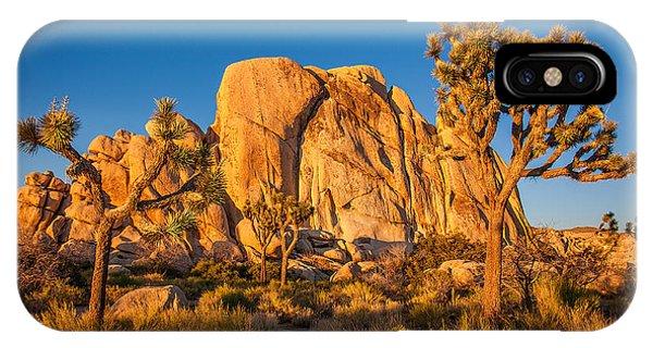 Desert iPhone X Case - Joshua Tree Sunset Glow by Peter Tellone