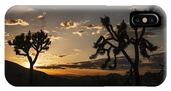 Joshua Tree Sunset Silhouette 2 IPhone Case