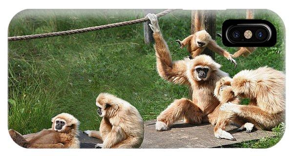 Joyful Monkey Family IPhone Case