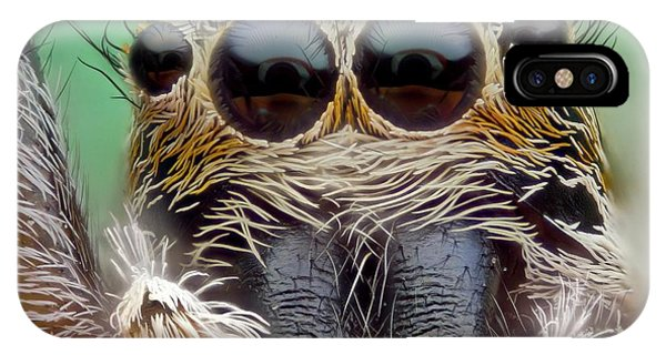 Jumping Spider Phone Case by Nicolas Reusens