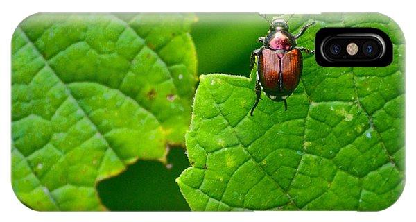 June Bug 3 IPhone Case