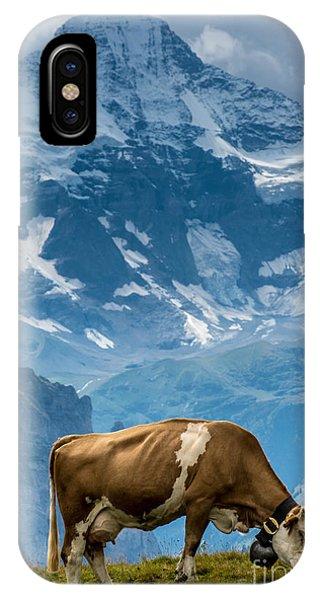 Jungfrau Cow - Grindelwald - Switzerland IPhone Case