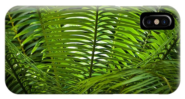 Jungle Fern IPhone Case