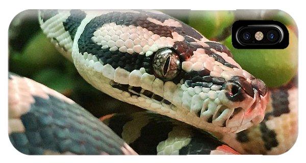 Jungle Python IPhone Case