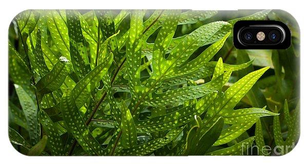 Jungle Spotted Fern IPhone Case