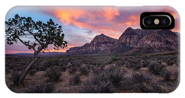 Juniper Sunset IPhone Case