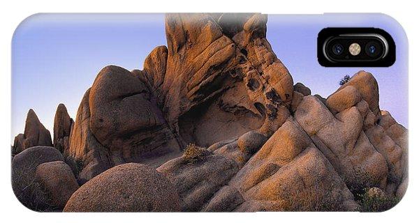 Jurassic Rocks IPhone Case