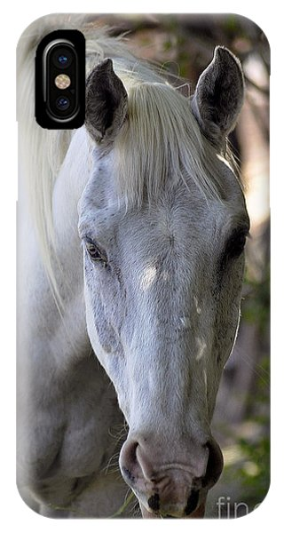 Just A Horse IPhone Case