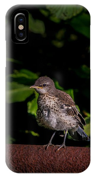 Just Out Of The Nest IPhone Case