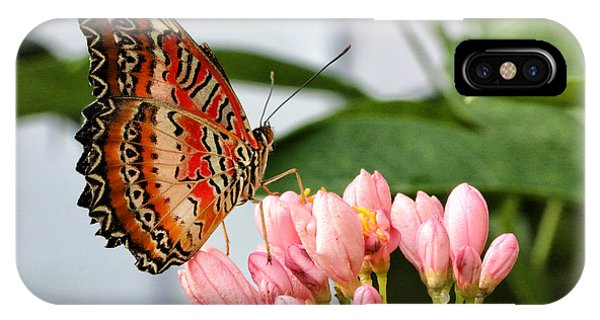 Just Pink Butterfly IPhone Case