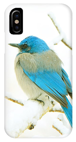 Just This Afternoon IPhone Case