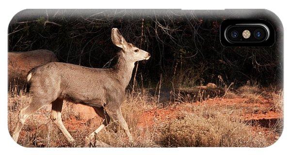 Boynton iPhone Case - Juvenile Mule Deer Running In Boynton by Jan and Stoney Edwards
