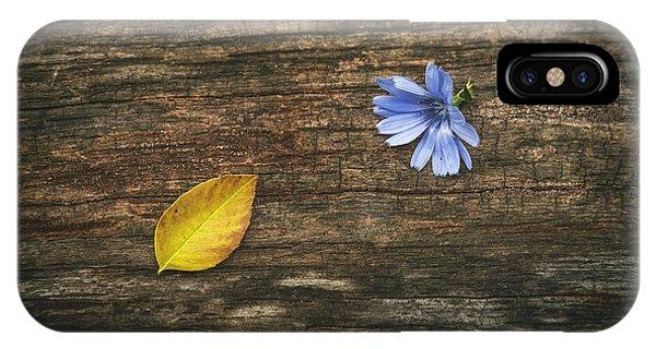 Fall Flowers iPhone Case - Juxtaposition by Scott Norris