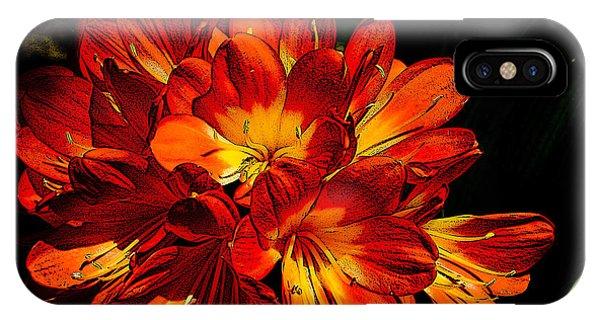 Kafir Lily Too IPhone Case