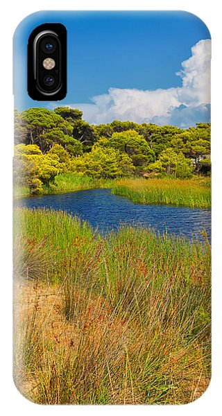 Umbrella Pine iPhone Case - Kalogria Forest And Lagoon by Gabriela Insuratelu