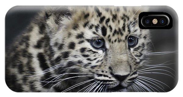 Kanika - Amur Leopard Portrait IPhone Case