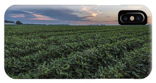 Kansas Soybeans IPhone Case