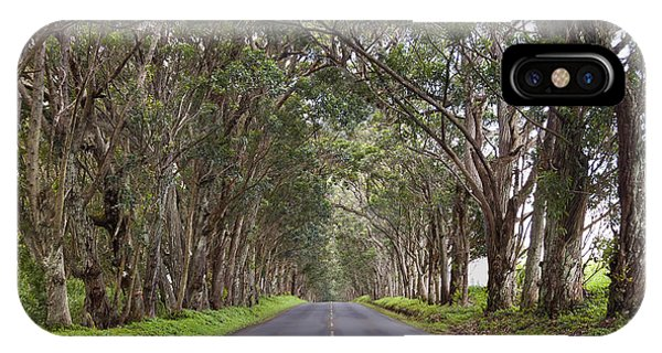 Kauai Tree Tunnel Road IPhone Case