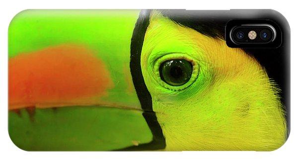 Belize iPhone Case - Keel-billed Toucan (ramphastos by Stuart Westmorland