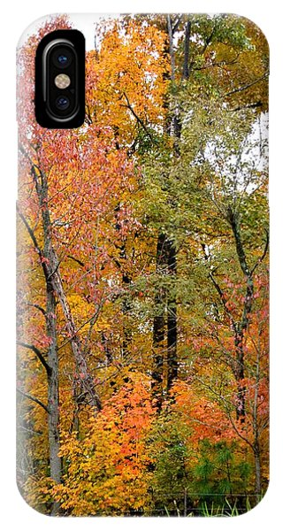 Kentucky Colors IPhone Case