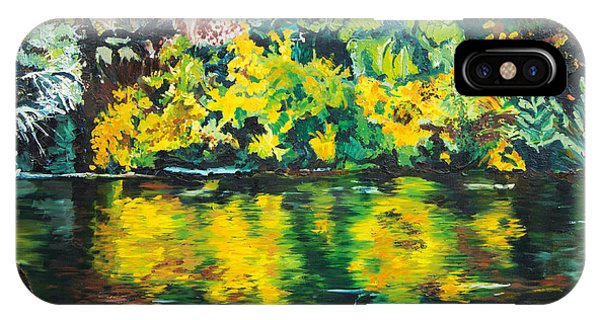 iPhone Case - Kern River by Julie Acquaviva Hayes