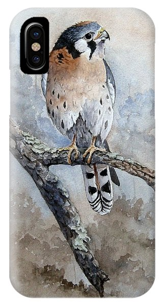 Kestrel Perch IPhone Case
